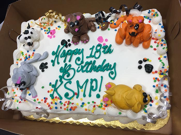 Happy 18th Birthday KSMP Cake With Cat And Dog Shaped Decorations