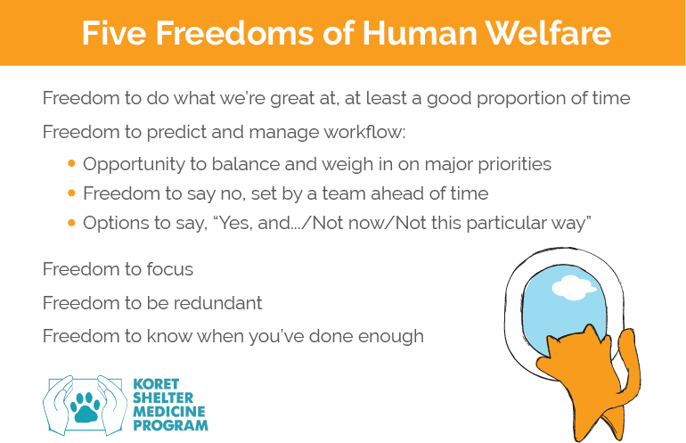 Five Freedoms of Human Welfare for Animal Shelter Workers