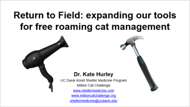 Return to Field: Expanding our tools for free-roaming cat management