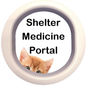 Cat Peering Through Portal for SMP